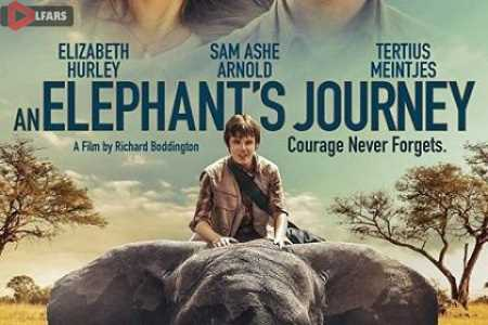 An Elephants Journey 2017