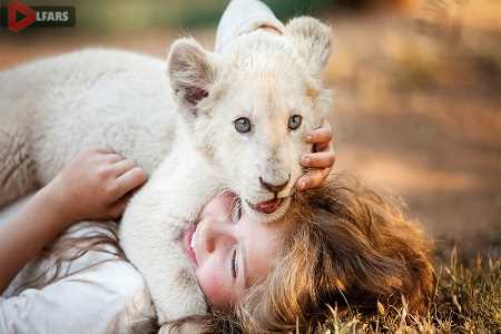 mia and the white lion 2