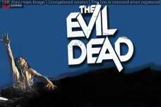 The Evil Dead1