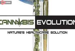 Cannabis Evolution 2019