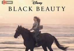 Black Beauty 2020