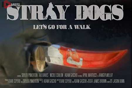 Stray Dogs 2020